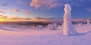 Skiing holidays in Lapland with Crystal Ski